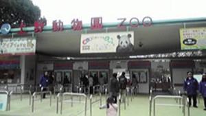 20110220uenozoo