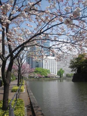 20110419_hirakawagate_0171_2